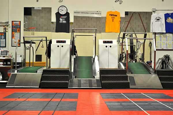 Sports Training Speedmills